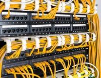 Fermez-vous des câbles jaunes de réseau reliés au commutateur photos libres de droits