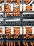 Fermez-vous des câbles jaunes de réseau reliés au commutateur Image libre de droits