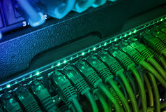 Fermez-vous des câbles verts de réseau reliés au commutateur rougeoyant dans l'obscurité photo stock