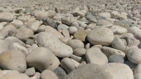 Fermez-vous des cailloux sur la plage Photo libre de droits