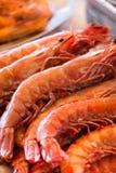 Fermez-vous des crevettes fraîches Photo stock