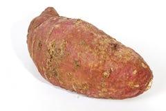 Fermez-vous des défauts sur la peau de patate douce Images stock