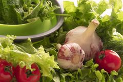 Fermez-vous des divers légumes frais colorés images libres de droits
