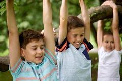 Fermez-vous des enfants accrochant sur l'arbre en parc d'été Photos libres de droits