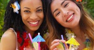 Fermez-vous des femmes de sourire sur les cocktails sirotants de vacances tropicales Images stock