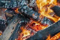 Fermez-vous des flammes de feu de camp brûlant des rondins images libres de droits