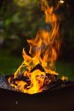 Fermez-vous des flammes de feu de camp Images stock
