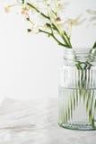 Fermez-vous des fleurs d'orchidées dans un vase en verre de vintage Photographie stock
