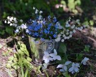 Fermez-vous des fleurs et du muguet bleus de myosotis dans le seau Photos stock