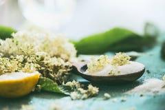 Fermez-vous des fleurs plus anciennes sur la cuillère avec du sucre photos libres de droits
