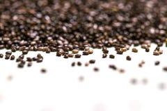 Fermez-vous des graines de chia et du x28 ; Hispanica& x29 de Salvia ; sur un blanc fond d'isolement Image stock