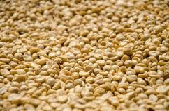 Fermez-vous des grains de café peu profonds de foyer images libres de droits