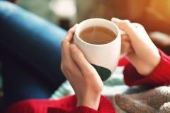 Fermez-vous des jolies mains du ` s de femme dans le chandail rouge tenant la tasse de thé à la lumière du soleil de matin images stock