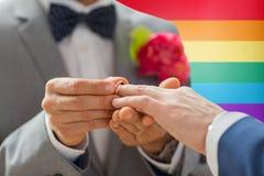 Fermez-vous des mains de couples et de l'anneau de mariage gais masculins Photo libre de droits
