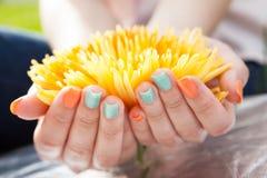 Fermez-vous des mains de la femme sur la fleur photos stock