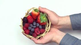 Fermez-vous des mains tenant le panier avec des baies de fruit de forêt banque de vidéos