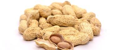 Fermez-vous des noix fraîches Image libre de droits