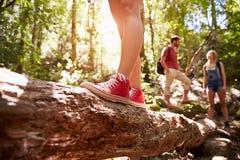 Fermez-vous des pieds équilibrant sur le tronc d'arbre dans la forêt Photos stock