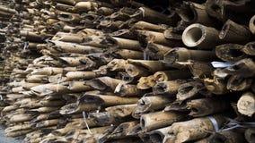 fermez-vous du bambou avec un mod?le sp?cial photographie stock libre de droits