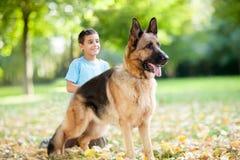 Fermez-vous du berger allemand Dog en parc, garçon à l'arrière-plan Photos stock