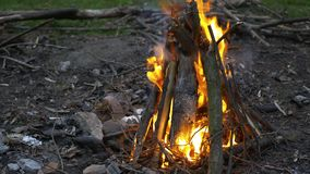 Fermez-vous du bois de chauffage brûlant dans un feu camper Durée rurale Incendie dans la cheminée banque de vidéos