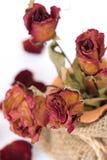 Fermez-vous du bouquet défraîchi sec de roses Photos stock