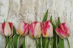 Fermez-vous du bouquet frais rose de ressort des fleurs de tulipe au-dessus de Gray Wooden Background rustique avec l'espace de c image stock