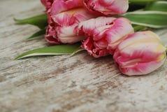 Fermez-vous du bouquet frais rose de ressort des fleurs de tulipe au-dessus de Gray Wooden Background rustique avec l'espace de c images stock