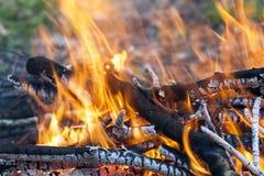 Fermez-vous du charbon en bois du feu brûlant chaud photo libre de droits