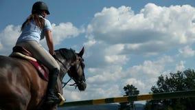 Fermez-vous du cheval d'étude et d'équitation de femme jockey de femme dans la nature et la préparation banque de vidéos
