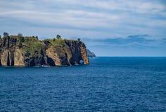Fermez-vous du chiffre de tronc d'éléphant, Açores, Portugal Photographie stock libre de droits