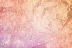 Fermez-vous du mot sec rose et d'amour écrit sur la carte Lumière molle a Photo stock