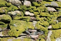 Fermez-vous du mur de pierres sèches couvert par mousse Photos libres de droits
