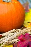 Fermez-vous du potiron et de l'Autumn Leaves oranges sur Backg en bois Photos stock