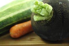Fermez-vous du radis, de la carotte et de la courgette organiques sains frais d'hiver Photo stock