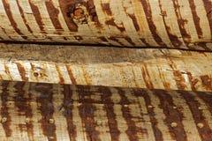 Fermez-vous du rondin empilé, texture en bois Photographie stock libre de droits