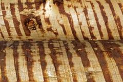 Fermez-vous du rondin empilé, texture en bois Photos libres de droits