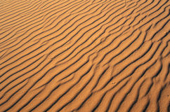 Fermez-vous du sable en parc de Coral Pink Sand Dunes State, UT du sud Images libres de droits
