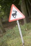Fermez-vous du signe de cerfs communs Photographie stock libre de droits