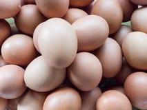 Fermez-vous jusqu'aux oeufs de poulet, plein cadre Photo stock