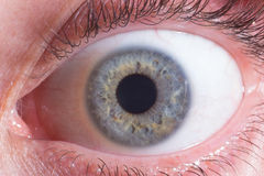 Fermez-vous sur l'iris de l'oeil Image stock