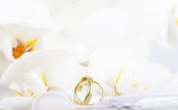 Fermez-vous sur les anneaux de mariage et l'orchidée blanche Photos stock