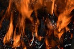 Fermez-vous sur un feu avec des cônes de pin Image libre de droits