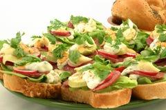 Fermez-vous vers le haut aux sandwichs savoureux Photographie stock