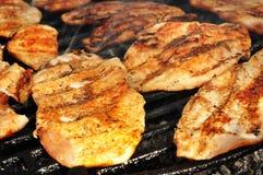 Fermez-vous vers le haut d'un blanc de poulet grillé Photographie stock libre de droits