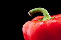 Fermez-vous vers le haut d'un poivron rouge sur le noir Photos stock