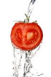 Fermez-vous vers le haut d'une tomate Photos libres de droits