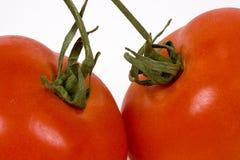 Fermez-vous vers le haut de deux tomates rouges Image libre de droits