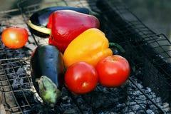 Fermez-vous vers le haut de différents légumes grillés frais sur le gril de grille photos stock