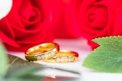 Fermez-vous vers le haut de l'anneau d'or et des roses rouges sur le blanc Photos libres de droits